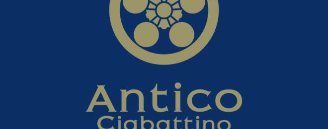antico-ciabattino-%e5%b0%8f%e6%96%87%e5%ad%97-%e7%b4%bax%e3%82%b4%e3%83%bc%e3%83%ab%e3%83%89-2